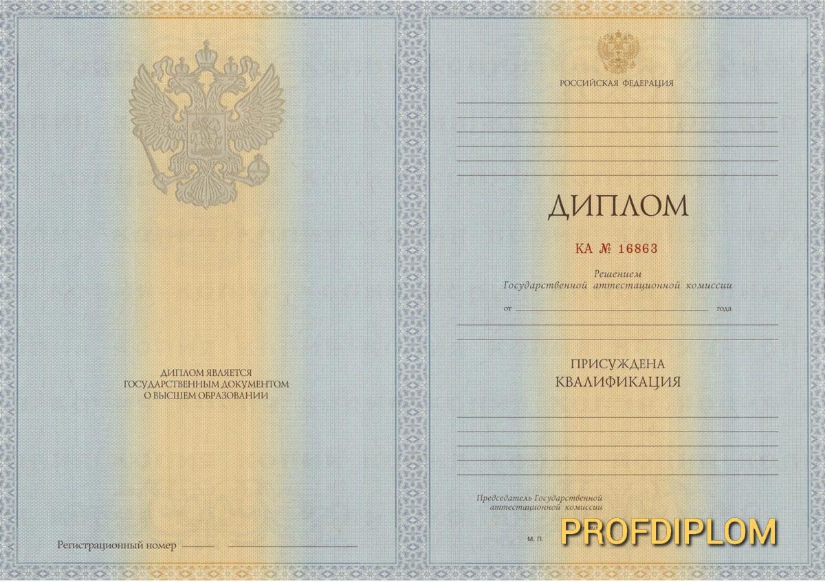 Диплом специалиста 2011-2013 купить